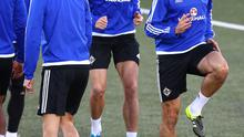 Fighting fit: Gareth McAuley is hoping to face Greece