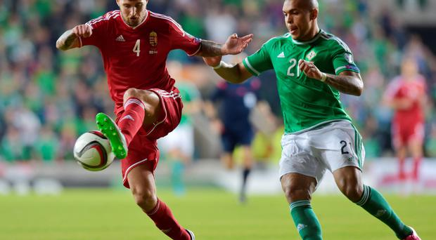 Closing in: Josh Magennis puts pressure on Hungary's Tamas Kadar after coming off the bench at Windsor Park