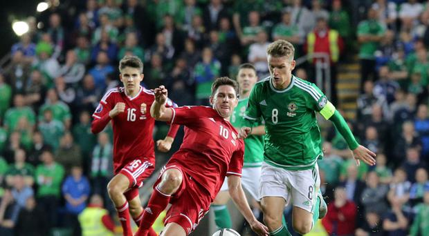 Charging forward: Steven Davis leaves Hungary's Zoltan Gera behind in the 1-1 draw at Windsor Park