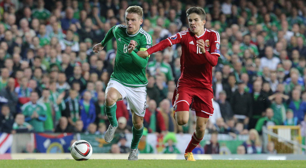 Lead role: skipper Steven Davis, in action against Hungary, hopes to lead Northern Ireland to finals