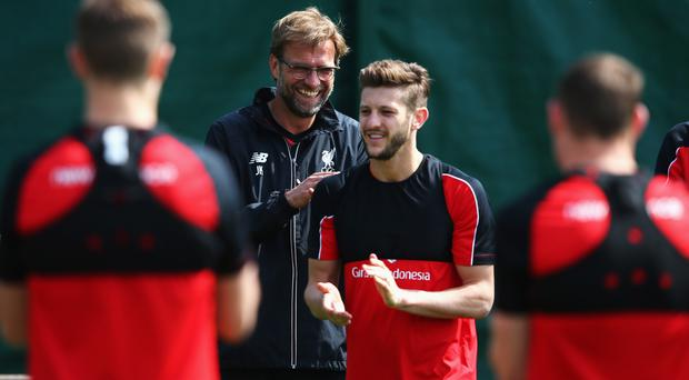 Great relationship: Adam Lallana believes he has established himself at Liverpool under the guidance of Jurgen Klopp