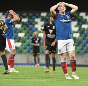 Disbelief: Shayne Lavery shows his frustration at a missed chance