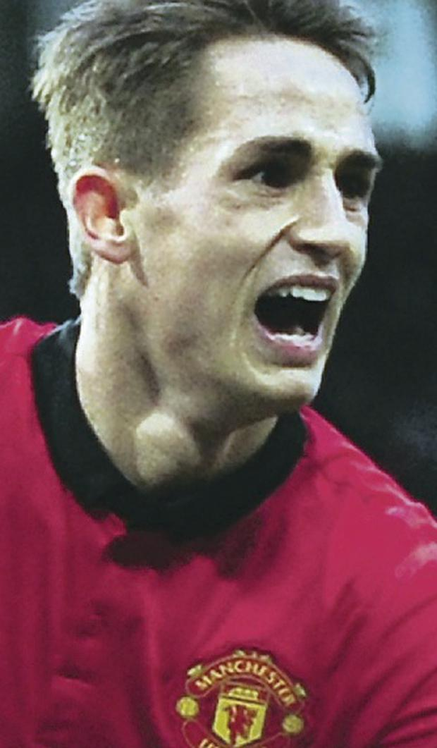 David Moyes feels Adnan Januzaj is a great prospect despite third booking for simulation