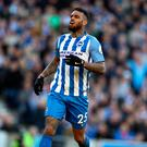 Jurgen Locadia of Brighton and Hove Albion