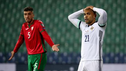 Northern Ireland's defeat to Bulgaria has seen them move down the world rankings. Pic: INPHO/Presseye/William Cherry