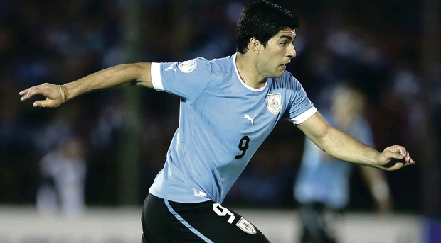Luis Suarez will be out to shoot down Northern Ireland in Montevideo