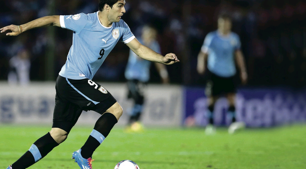 Red hot: Luis Suarez is aiming to take the World Cup by storm after a blistering season at Liverpool