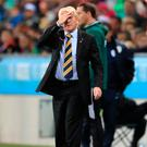 Sizeable problem: Scotland manager Gordon Strachan