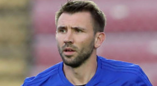 So close: Gareth McAuley and NI almost qualified for Russia