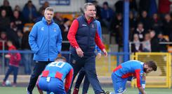 Staying put: Colin Nixon has agreed a new three-year deal with Ards after rejecting offers from Glentoran