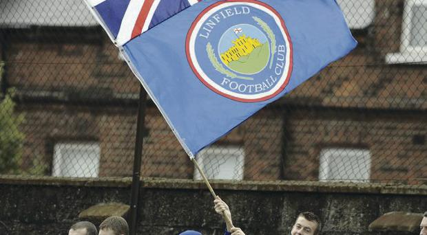 Flying the flag: A new Linfield supporters' group is ready to stay away when Crusaders host their club later this month