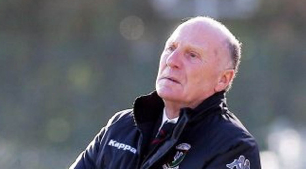 Confidence: Roy Coyle is sure Glentoran can rise again and that big name Nacho Novo can help