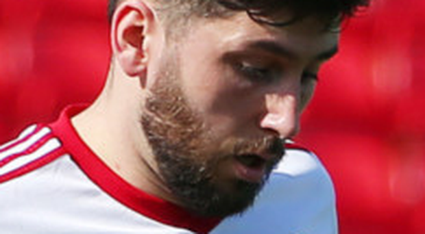 Net gains: Sean Mackle was on target for Portadown