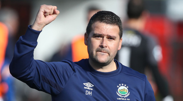 Title power: Linfield boss David Healy knows Niall Currie's men will be a tough nut to crack