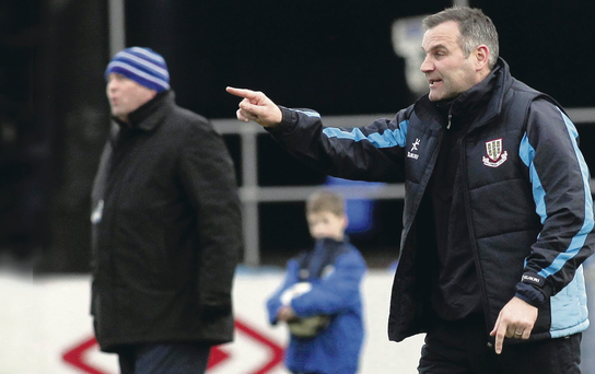 Back with a bang: Glenn Ferguson expects Linfield boss David Jeffrey to mastermind a revival