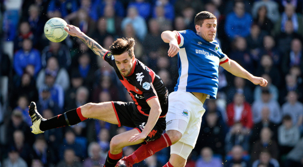 High-flyers: Crusaders' Declan Caddell says clashes with Linfield always bring out the best in both teams