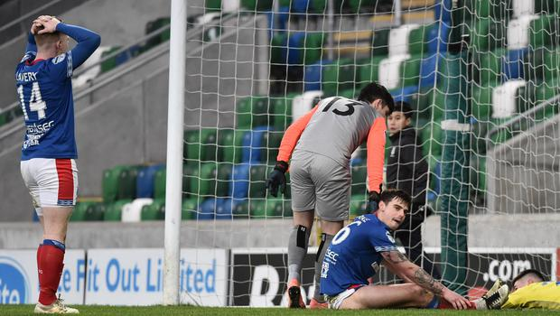 Drawing a blank: Linfield players show their frustration during last month's draw with Dungannon