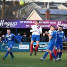 Using his head: Mark Haughey opens the scoring by putting Linfield ahead against the Swifts at Stangmore Park