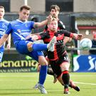 Dungannon host Crusaders.