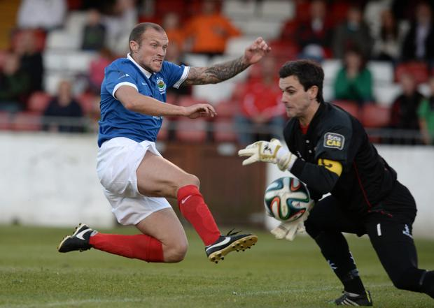 Swimming against the tide: Linfield boss Warren Feeney knows his side must conquer Glentoran tonight