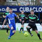 Stalemate: Terry Fitzpatrick (left) in action against Glentoran