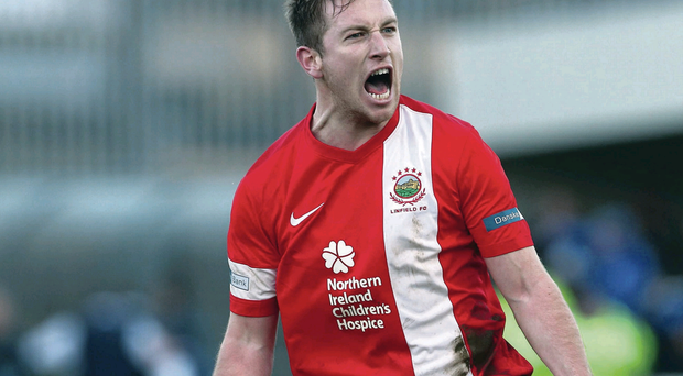 On target: Mark McAllister has been among the goals in Linfield's title push
