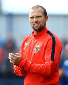 A year wiser: Warren Feeney is growing into the Linfield job