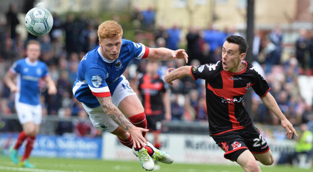 Heavyweight clash: Linfield's Chris Casement and Crusaders' Paul Heatley will do battle again at Windsor