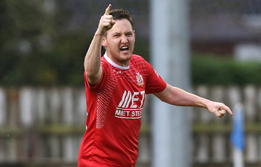 Gary Twigg grabbed the equaliser for Portadown