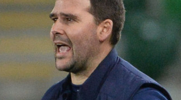 Red alert: David Healy is keen to avoid any complacency