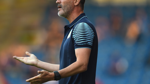 Irish cause: Roy Keane will now concentrate solely on his duties with the Republic