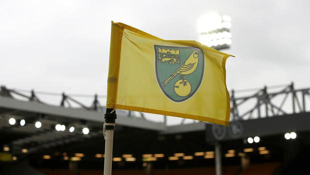 Norwich have signed French teenager Melvin Sitti from Sochaux-Montbeliard (Chris Radburn/PA)