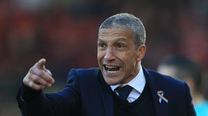 Brighton manager Chris Hughton, pictured, has moved to bring in Ghana forward Raphael Dwamena