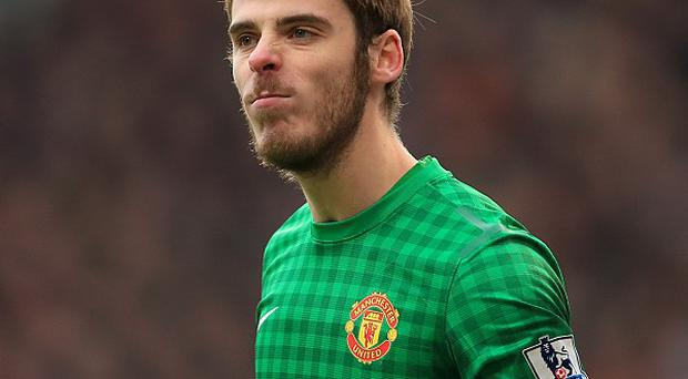 David de Gea, pictured, has been hailed by Wayne Rooney