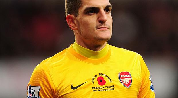 Vito Mannone found first team opportunities hard to come by at Arsenal