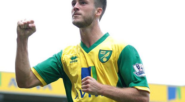 Ricky van Wolfswinkel scored the second goal for Norwich as they drew against Everton