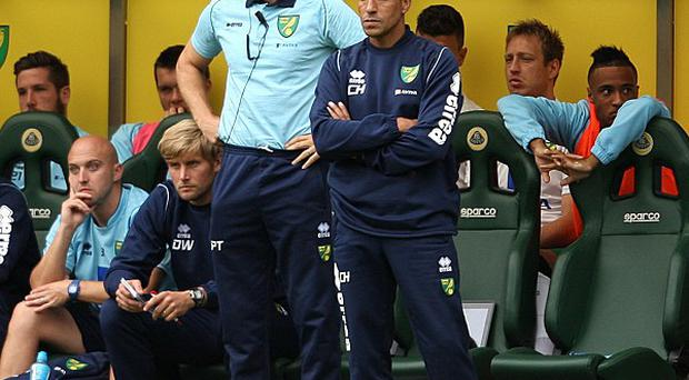 Chris Hughton was pleased with Norwich's display against Everton