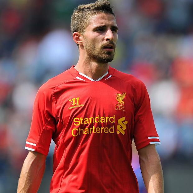 Fabio Borini has joined Sunderland on a one-year loan deal