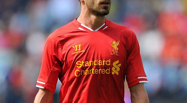 Fabio Borini endured a frustrating first season at Liverpool