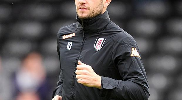 Mladen Petric has been brought in to bolster West Ham's attacking options