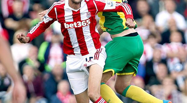 Norwich's win over Stoke lifted them to 14th in the Premier League table