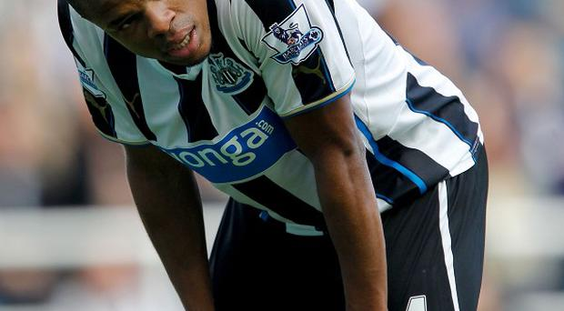 Loic Remy has made a fine start to his season-long loan at Newcastle