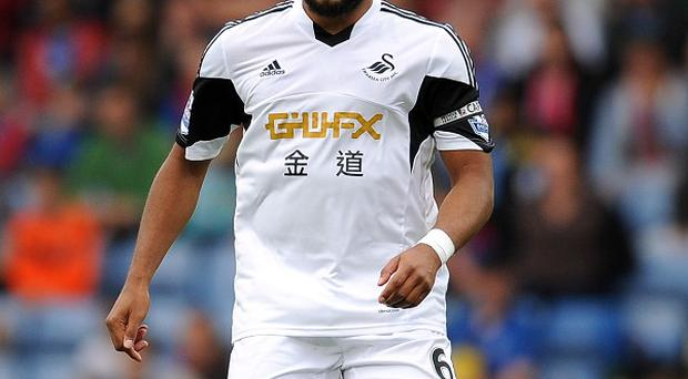 Ashley Williams has been struggling with an ankle injury