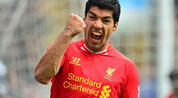 Luis Suarez, pictured, is relishing playing alongside Daniel Sturridge