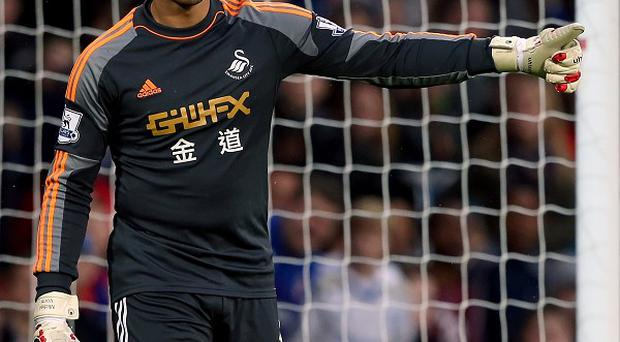 Michel Vorm is expected to be out for several weeks