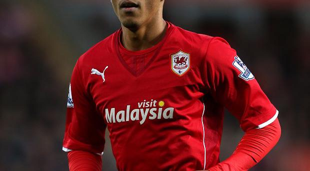Peter Odemwingie, pictured, and Kenwyne Jones have swapped clubs