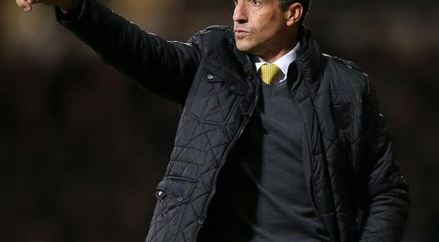 Chris Hughton's Norwich are just one point clear of the drop zone