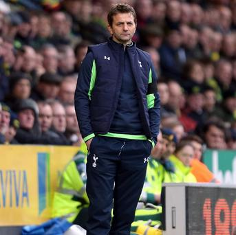 Tim Sherwood believes he will be in charge of Tottenham for years to come