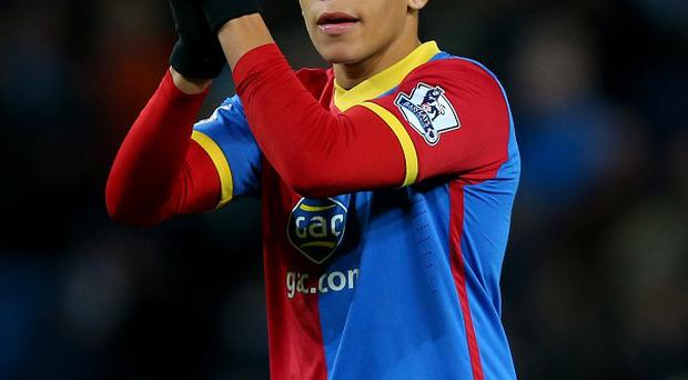 Dwight Gayle has been ruled out of Palace's clash against Newcastle at the weekend