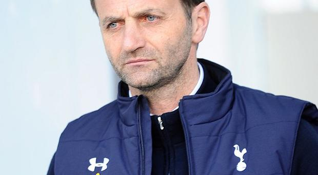 Tim Sherwood has drawn up a wishlist of summer transfer targets
